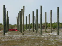Pilings are ready